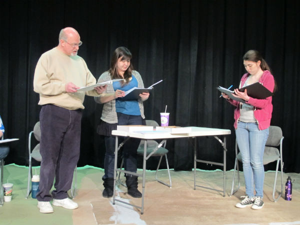 Larsen (Emma Sala) is failing science. Her grade depends on her science fair project. The principal (Kelly Anglim) tales Larsen under her wing and arranges for her to do a project designed to get the eye of the science teacher/softball coach (Patrick Kennerly)-- throwing a softball through a hornet's nest just outside school property that the landowner has refused to remove.
